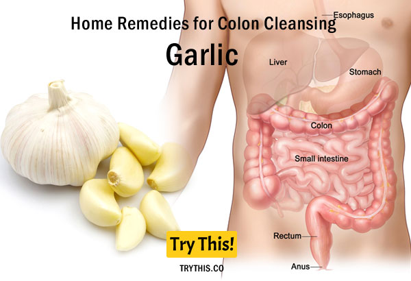Garlic as a Home Remedies for Colon Cleansing