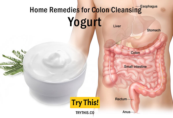 Yogurt as a Home Remedies for Colon Cleansing