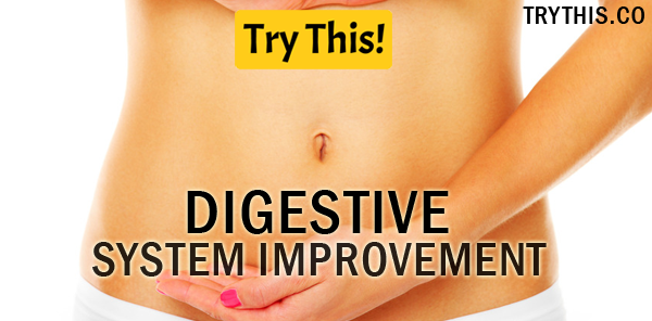 Digestive System Improvement