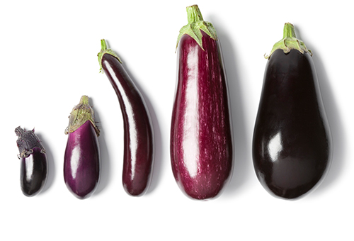 Eggplants Nutritional Value