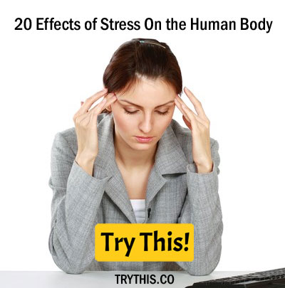 20 Effects of Stress On the Human Body