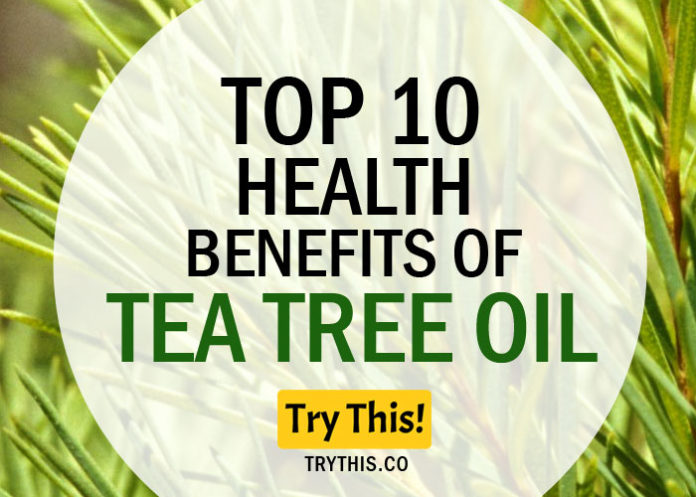 Top 10 Health Benefits of Tea Tree Oil