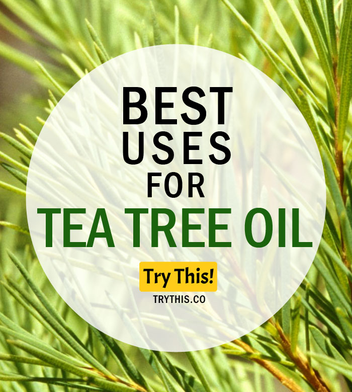 Best Uses of Tea Tree Oil
