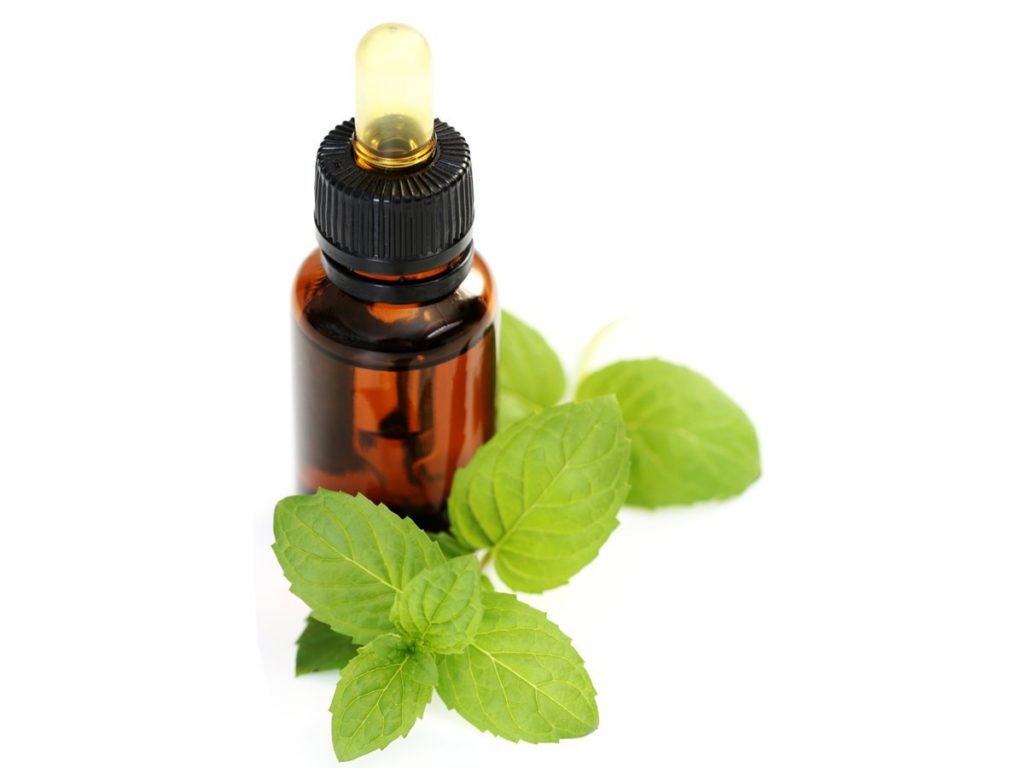 Common Health Benefits of Peppermint oil