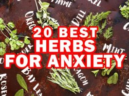 How to Overcome Anxiety: 20 Best Herbs for Anxiety