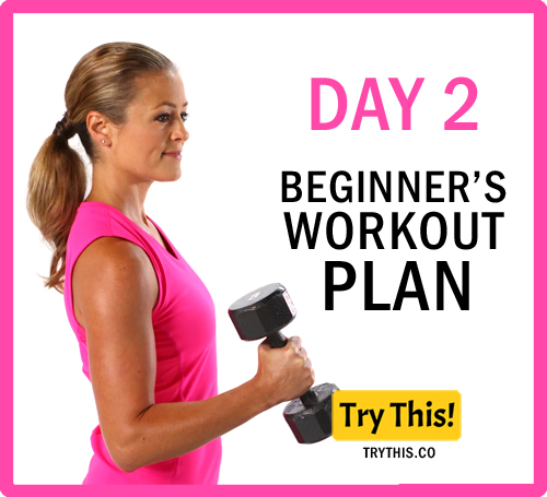 7 Days Beginner's Workout Plan - Day 2