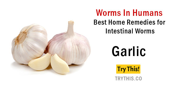 Best Home Remedies For Intestinal Worms Health Tips