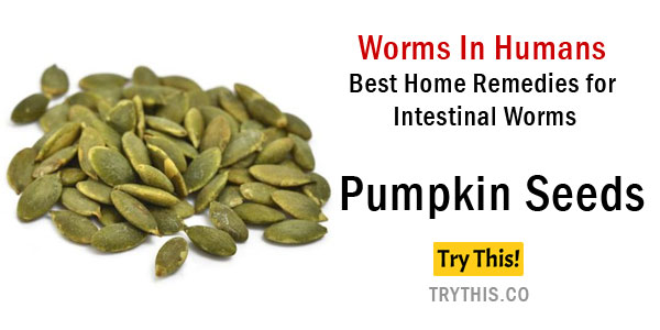 how to get rid of intestinal worms