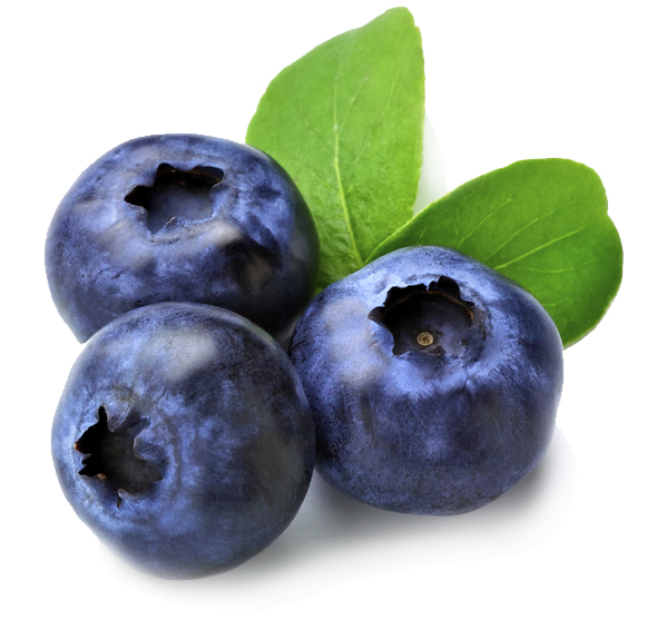 Blueberries as a Anti-Inflammatory Food