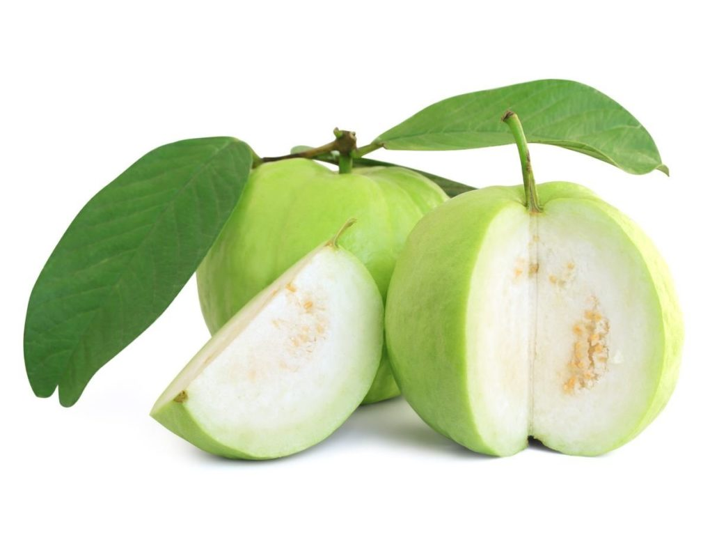 Guava Boost Your Immunity