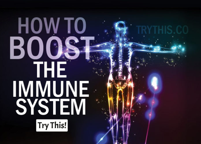 How to Boost The Immune System