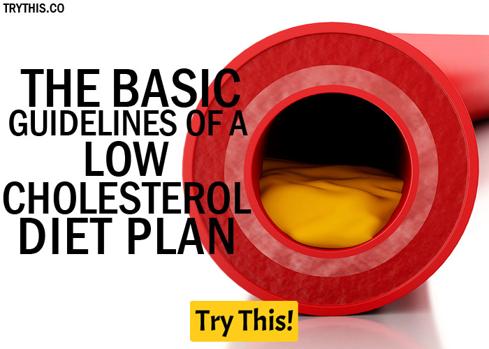 The Basic Guidelines of a Low Cholesterol Diet Plan