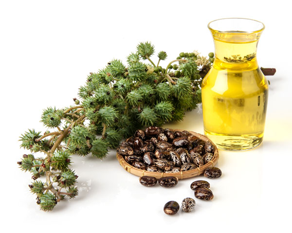 Top 20 Castor Oil Uses