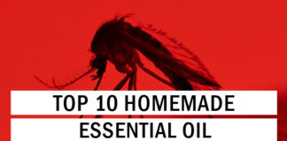 Top 10 Homemade Essential Oil Bug Spray Recipes