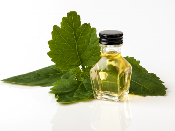 Patchouli Oil is Used to Treat Scalp Problems
