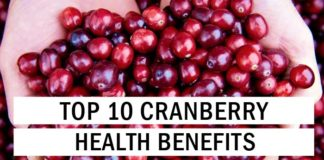 Top 10 Cranberry Health Benefits