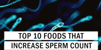 Top 10 Foods That Increase Sperm Count