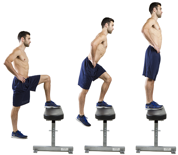 Step-ups and Sit to Stand