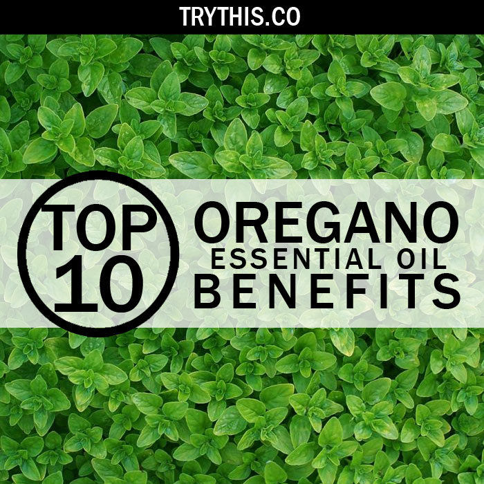 Top 10 Oregano Essential Oil Benefits